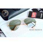 Ray-ban Classic G-15 Aviator Polarized Gọng Vàng Lens Xanh RB3689 9064O9 58-14