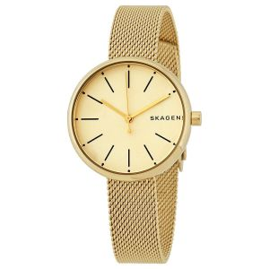 Skagen Signature Steel Mesh Women's Watch SKW2614