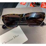 Christian Dior Diorinsideout 2 Dark Havana Brown Tortoise Mắt Nâu Viền Đồi Mồi